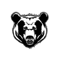 Andenne Black Bears